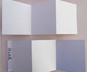 accordion album